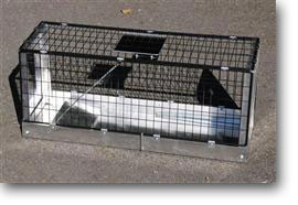 Cat trapping cages